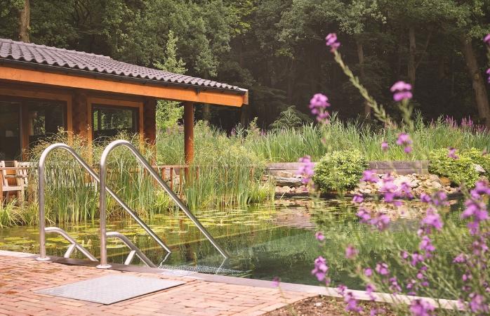 De natuurlijke zwemvijver van Thermen Soesterberg.